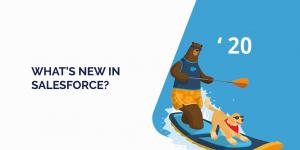 Salesforce Summer 20 Release